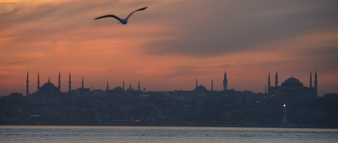 Copyright © Özhan Öztü