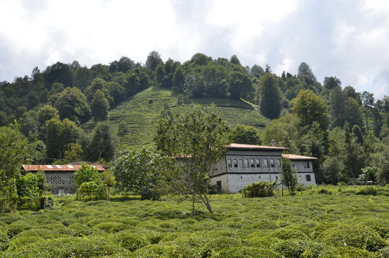East of Trabzon travel